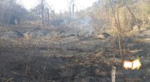 Prefeitura de Betim diz que incêndio atingiu terreno vizinho a parque ecológico
