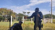Guarda Municipal de Betim dá início ao plantio de mudas de árvores pela cidade