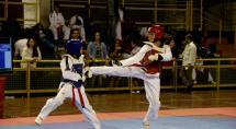 Betim sedia Festival Mineiro de Taekwondo pela 2ª vez