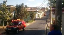 Cinco pessoas ficam feridas após ataque de abelhas em Betim